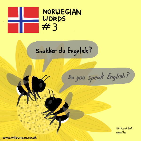 Norwegian word 3, Do you speak English, 17th Augus 2015 (Drawing 527)