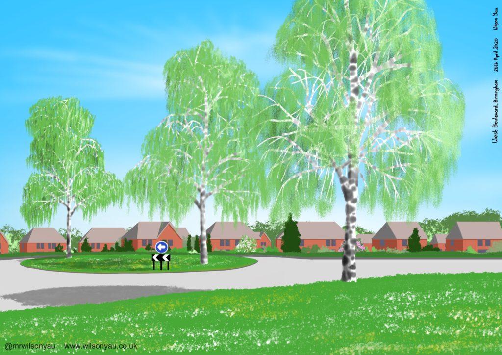 Drawing of Birch trees, West Boulevard, Birmingham