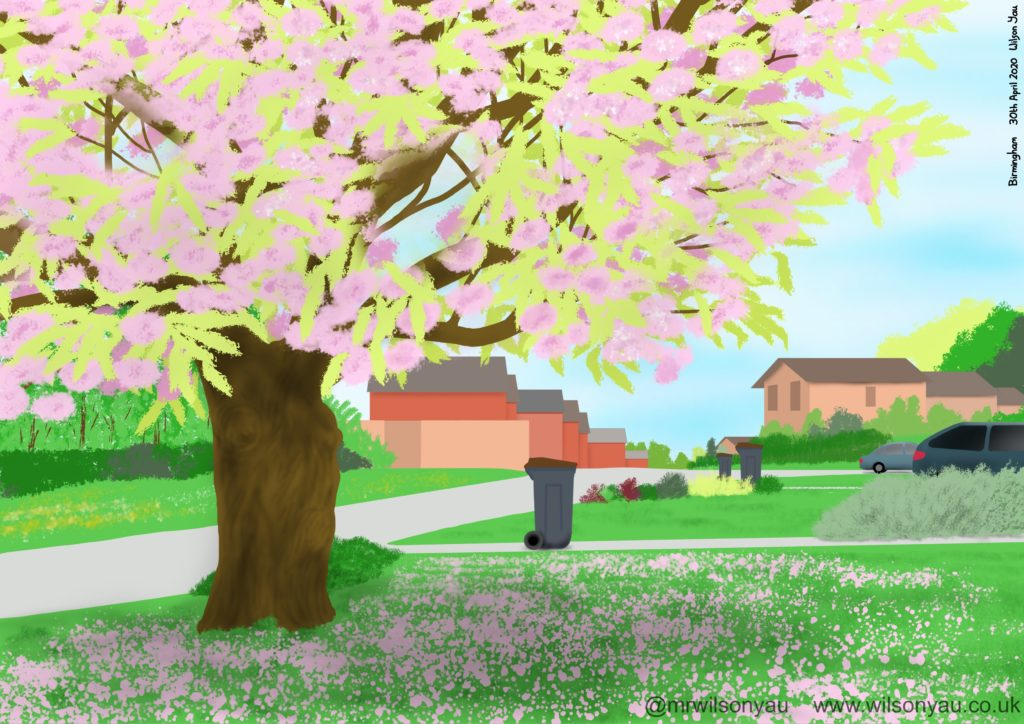 Drawing of Cherry tree