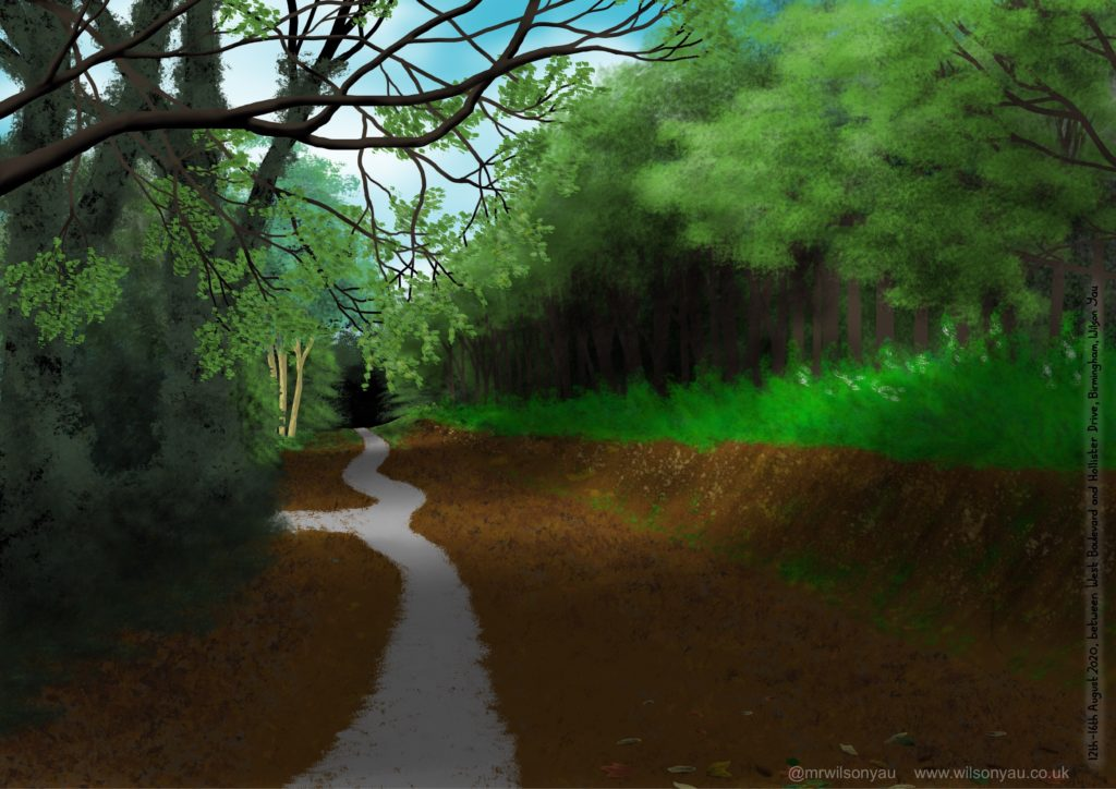 ipad drawing of wooded path